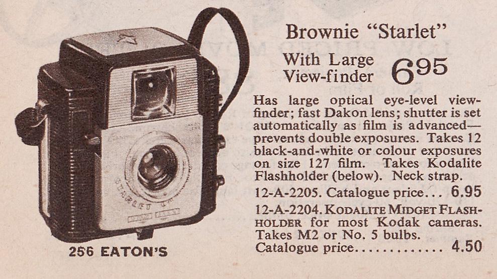 browniestarletp256